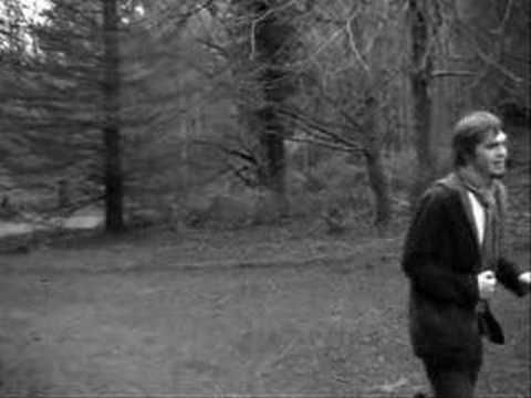 Explosions in the Sky - Your Hand in Mine  (Artsy low-budget film footage by some media arts student)  This is friendship music.