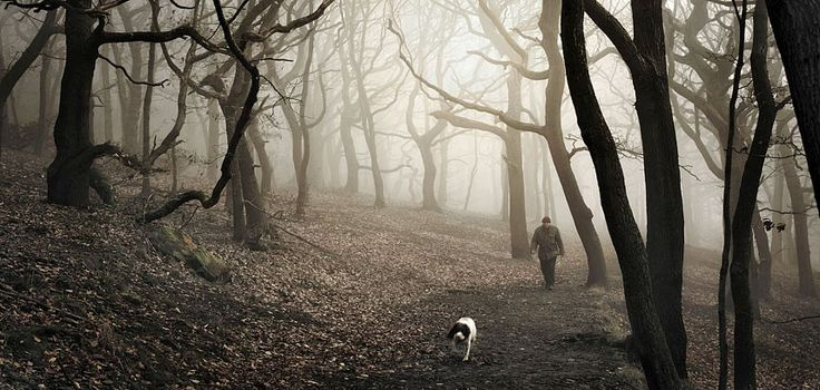 One man and his dog, Halifax, West Yorkshire, England Picture: ROBERT BIRKBY/REX FEATURES