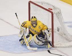 Michigan Wolverines Hockey Game Ann Arbor, MI #Kids #Events