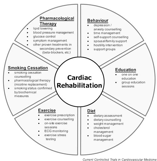 Cardiac Rehabilitation after Heart Bypass plays a very important role in recovery and preventing further heart problems. Here's how cardiac rehab takes care of important aspects.