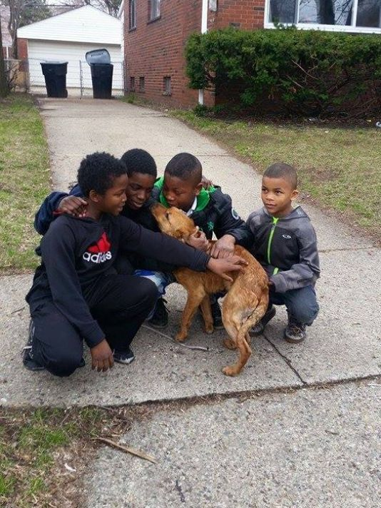 """PETA rewards 4 Detroit boys for rescuing dog.  """"The kids freed the dog, fed her, named her Sparkle, and took care of her until a local rescue group could take over,"""" according to a news release from PETA."""