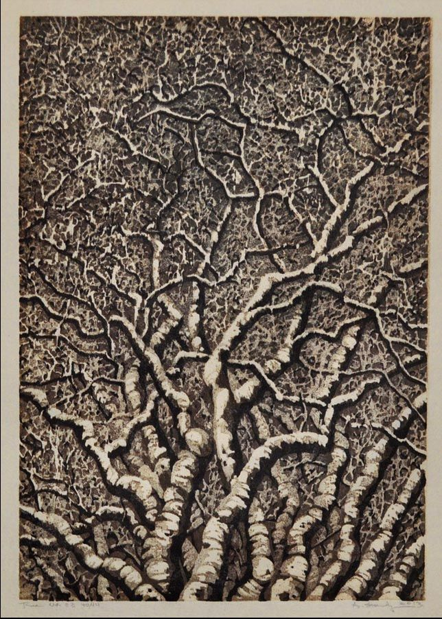 """tree no woodcut by andrea starkey http"