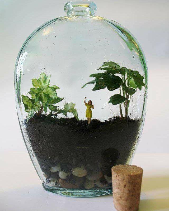 Éste es uno de los primeros terrarios de enelbosque nació en el año 2012 y me acompañó durante meses en mi escritorio. Con el ir y venir de la vida quedó abandonado en el que iba a ser mi taller durante otro tanto (sin agua y con poca luz). Un superviviente en toda la extensión de la palabra al que le tengo especial cariño. #terrario #terrarium #miniature #glass #hiedra #craft #primerageneracion