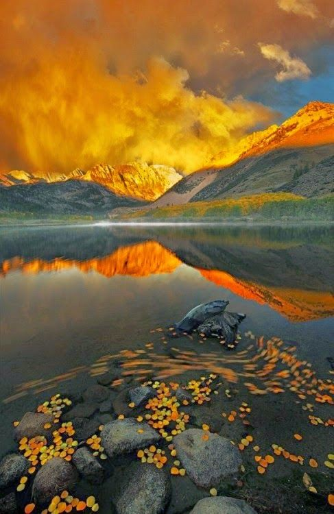 Eldorado National Park,Bishop ,California Eldorado National Forest is a U.S. National Forest located in the central Sierra Nevada mountain r...