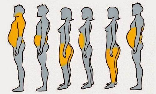 accumulo grasso ante