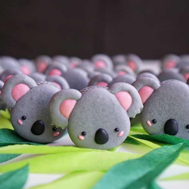 "Did you know that in Taiwan we refer to koala as ""無尾熊"" which literally translate to ""no tail bear""?  .  .  #macarons #koala # #マカロン #馬卡龍 #可愛い #甜點 #手作りお菓子 #クッキー #photoofday #chocolategram #巧克力 #happy #dessertgram #cookingram #macarongram #instafood #instagood #sweetstable #寶寶 #sweets #desserts #decoratedcookies #babyshower #dailyinsta #마카롱  #療愈 #cute #cuteanimals #australia"
