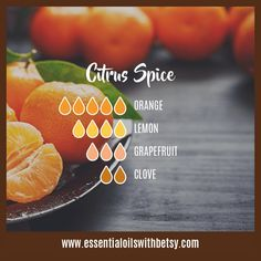 c464acc6f0b07d164995736a9f7b9283 Citrus Spice Fall Diffuser Blend of essential oils: Orange, Lemon, Grapefruit, C...
