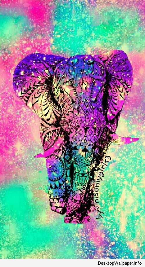 Best 25+ Elephant wallpaper ideas on Pinterest | Elephant background, Pink elephant wallpaper ...