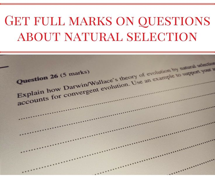 natural selection essay question The essay questions require you to perform the first and third of many students enter the course with the idea that natural selection and evolution.