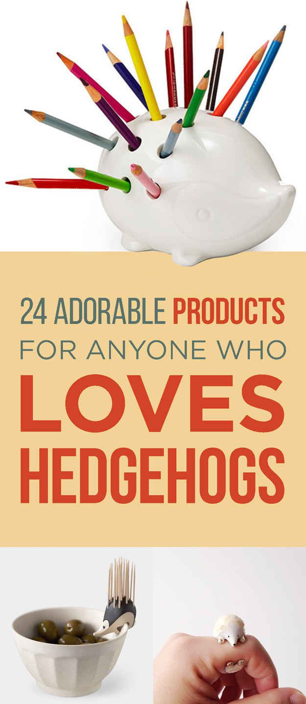 24 Super Cute Products For The Hedgehog Lover In You