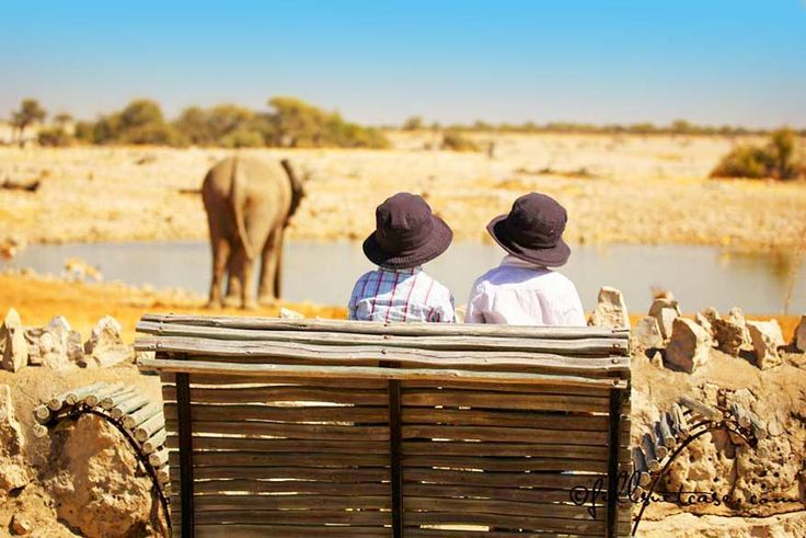 One of the highlights of any trip to Namibia is without a doubt a visit to Etosha National Park. The park is so big, however, that you will quickly face the same question as we…