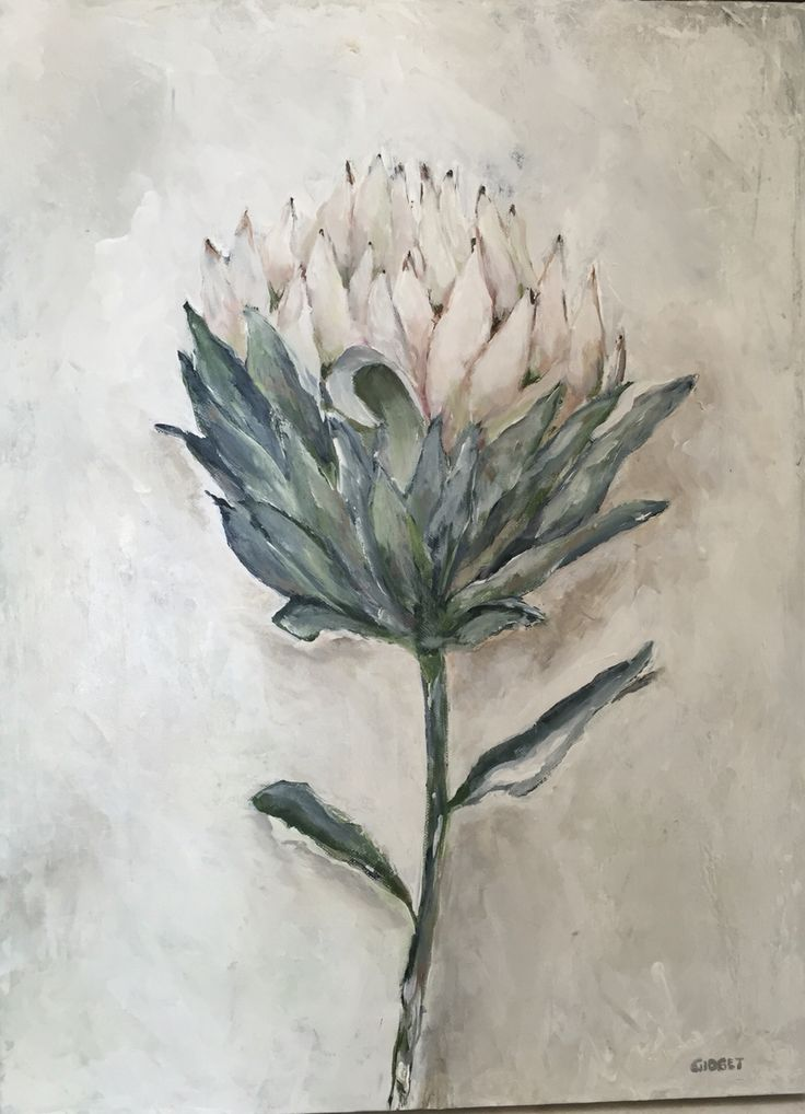Single white protea, painted with acrylic on canvas