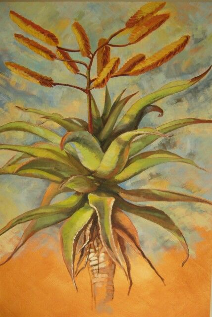 Aloe - Oil on canvas by Christine Joubert