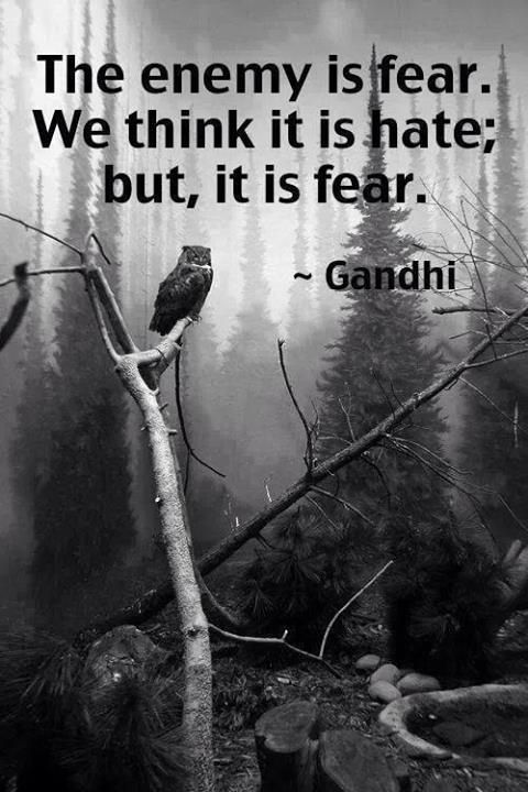 The opposite of love is fear, not hate.