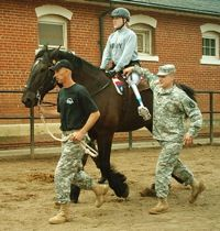 PATH International - Equine Services for Heroes