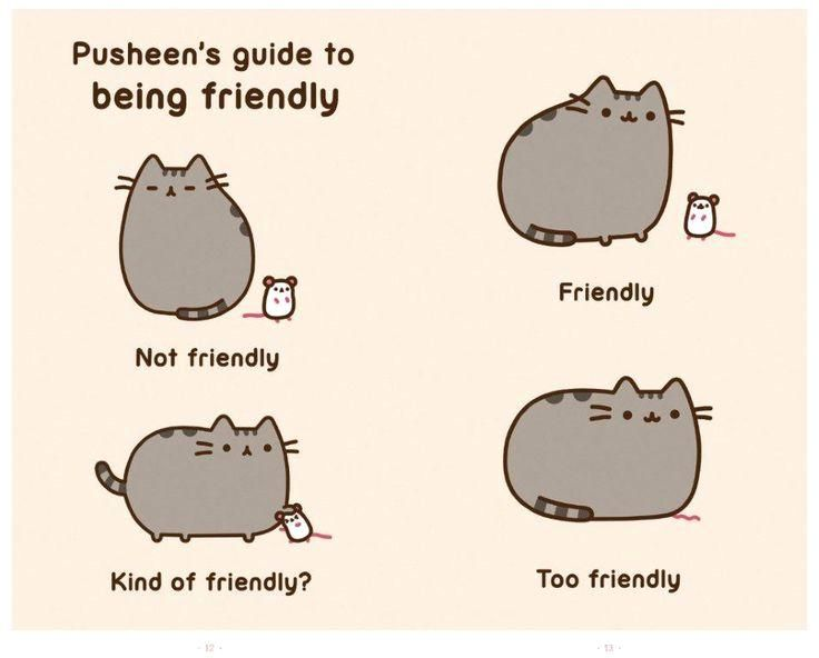 I Am Pusheen the Cat   Book by Claire Belton - Simon & Schuster AU