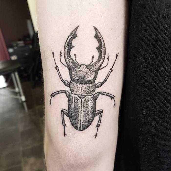 Best 25+ Beetle tattoo...
