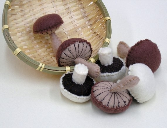 Felt mushrooms. Don't know what to do with them... but they're cute.