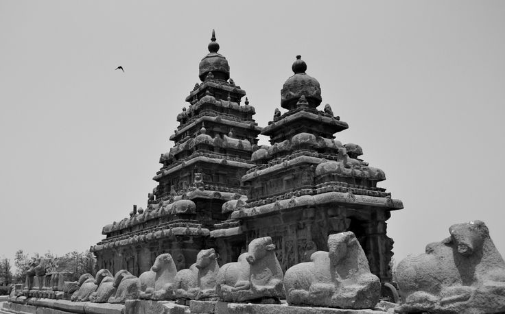 a view of the famous shore temple at Mahabalipuram. It is one of the 15 UNESCO world heritage sites in India.