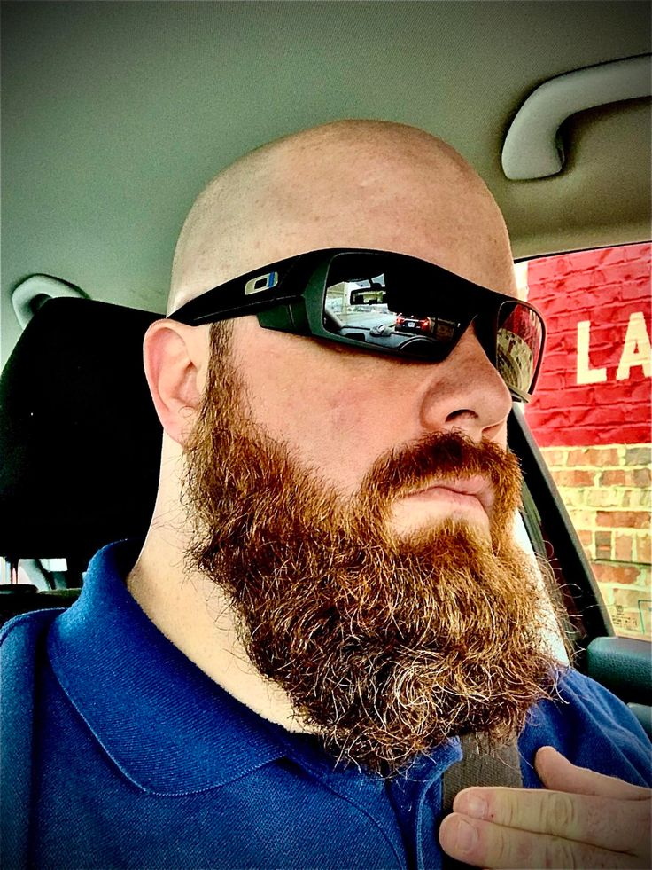 reddit the front page of the Beard no mustache