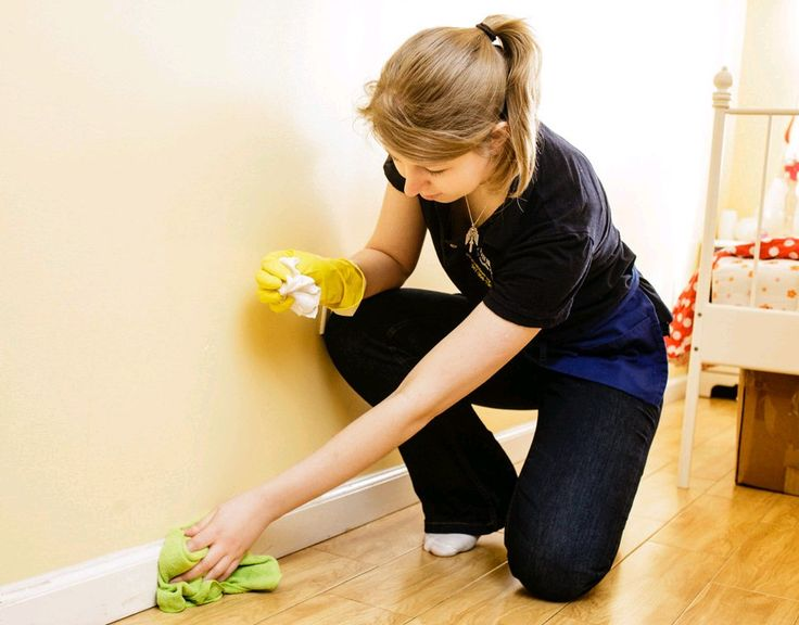 81 best House cleaning pros near Minneapolis images on Pinterest