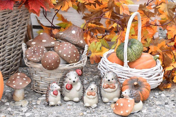 Roztomilá zvířátka doplní podzimní aranžmá: http://www.harasim.info/1903/halloween-dyne/