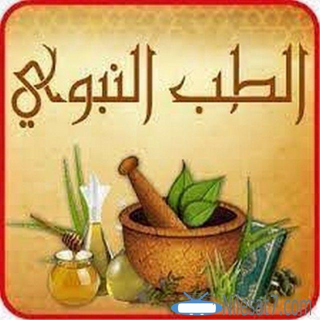 تردد قناة الطب النبوي العربية 2020 Alteb Alnabawy Tv Alnabawy Alteb Alnabawy Alteb Alnabawy Tv الطب النبوى Planter Pots