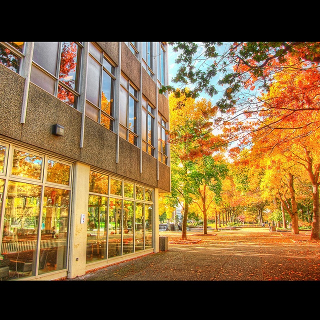 UVic in the Fall.