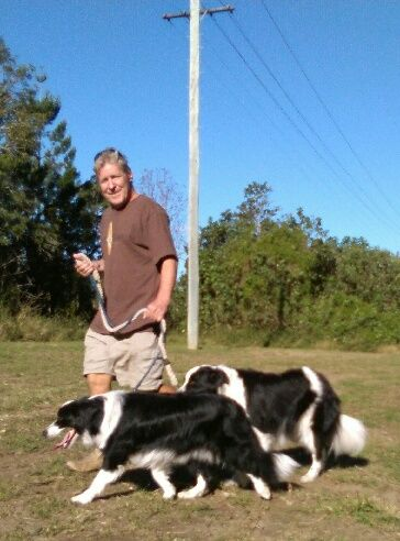 PAMMY/PADDY........THE WALK! dogsbigdayout.com.au