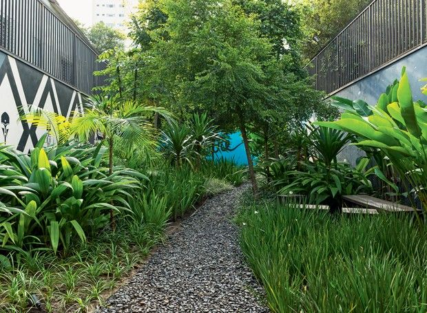 Praca-do-cafe-Barbas-de-serpente-curculigos-dracenas-arboreas-dianelas-iris-mirindibas-moreias-heliconias-jardim-comercial (Foto: Edu Castello/Editora Globo)