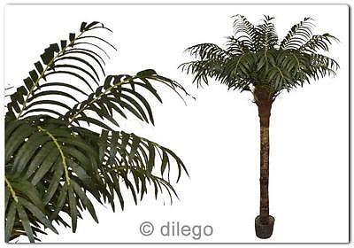 Kokospalme Palme Kunstpflanze Kunstpalme Naturstamm Kunstbaum 170 cm in Möbel & Wohnen, Dekoration, Blumen & Künstliche Pflanzen   eBay