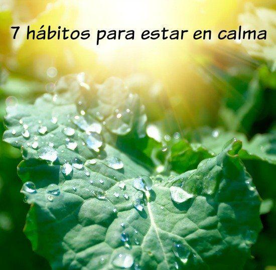 Los 7 hábitos para estar en calma.