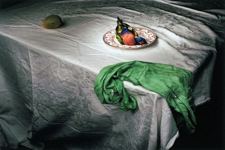 Marian Drew (Australian, born 1960) 'Lorikeet with Green Cloth' 2006