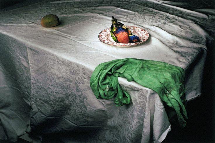Marian Drew (Australian, born 1960) 'Lorikeet with Green Cloth' 2006