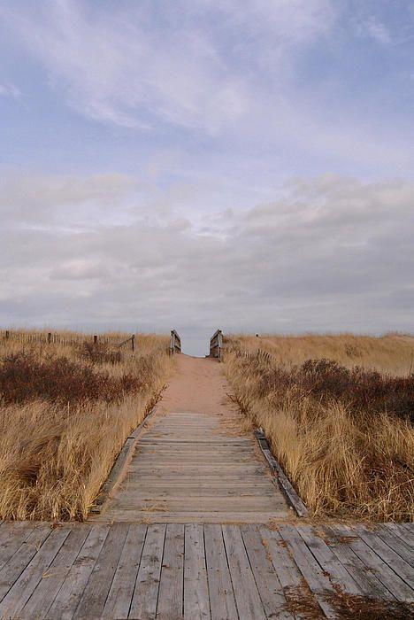 Winter Walkway - Melmerby Beach