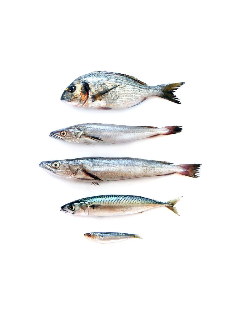 Wellness:  Fish is on the Swedish food guide, so it's good for them to eat it.