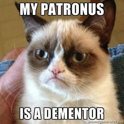 Cuz loving cat jokes isn't dorky enough, here's one that's also a Harry Potter reference