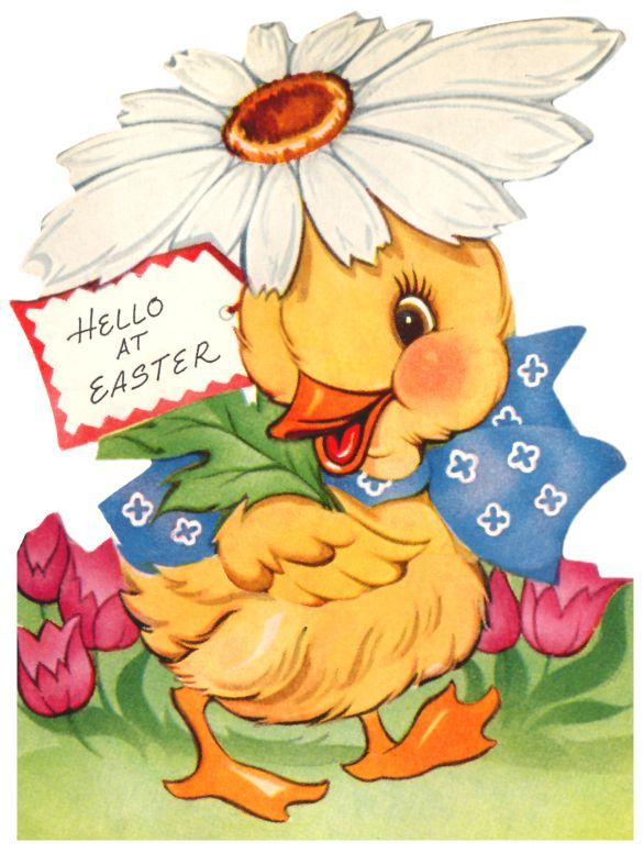 vintage easter card - cute duck with a daisy