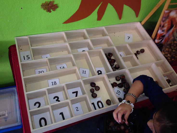 cijfers in een letterbak. kinderen vullen de bak met aantallen herfstvruchten, stokjes, blaadjes.