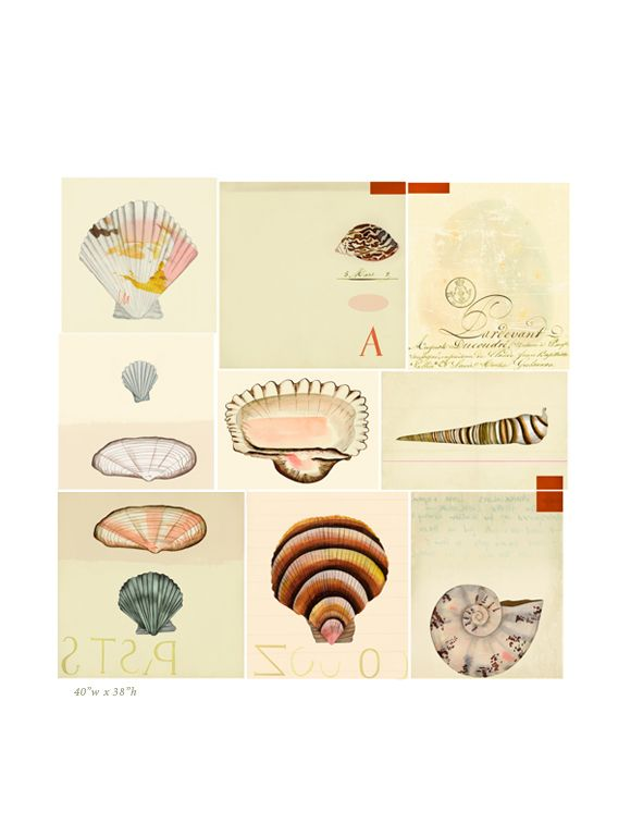 Natural History Art Prints