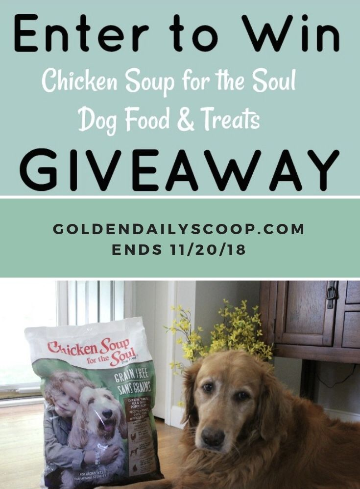 Why We Love Chicken Soup For The Soul Dog Food Chicken Soup Dog