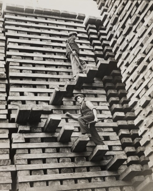mpdrolet:    Mountain of Railway Sleepers, taken in October 1937 by Fox for the Daily Herald.