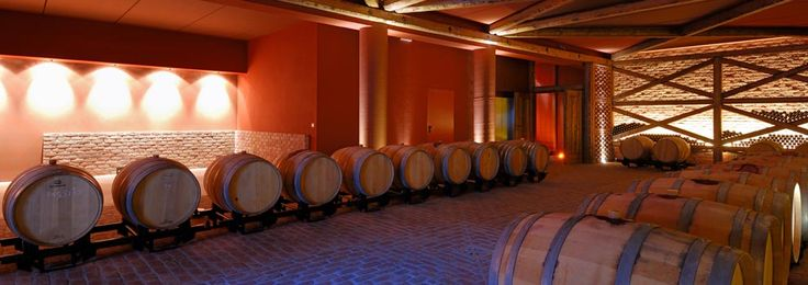 The tasting room in the ageing cellar