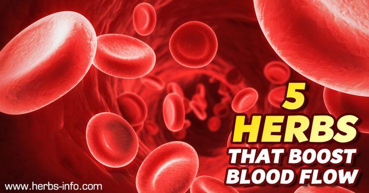 5 Herbs That Boost Blood Flow►►http://herbs-info.com/blog/5-herbs-that-boost-blood-flow/?i=p