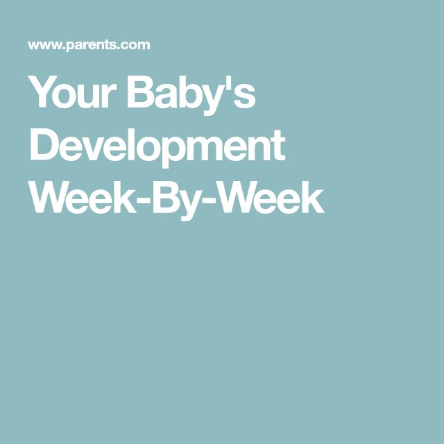 Your Baby's Development Week-By-Week
