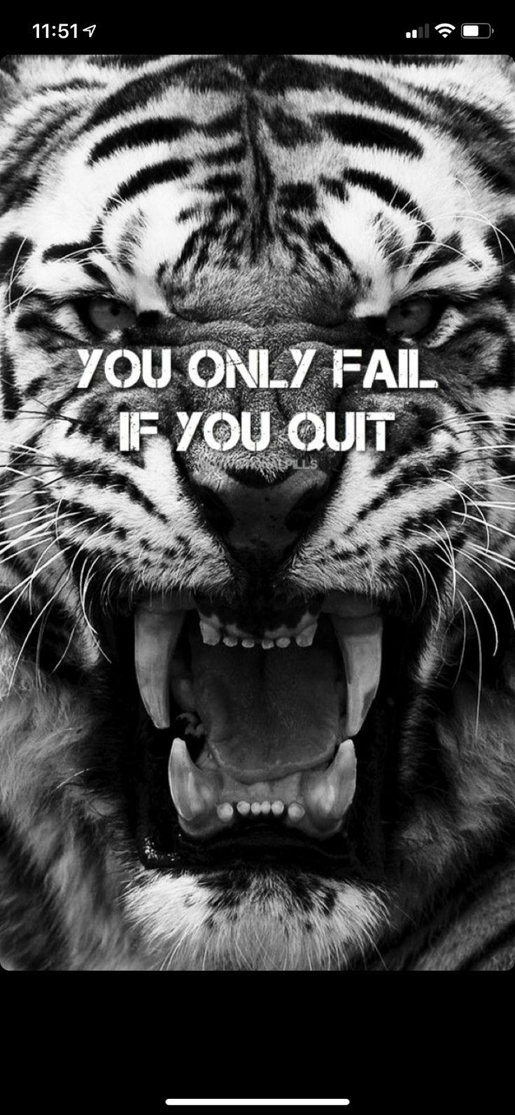 Pin by Mallory Mattingly on Motivation Gym wallpaper