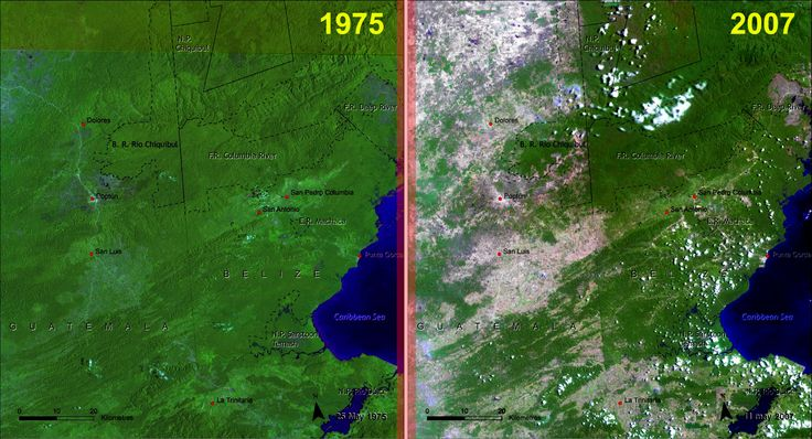 Figure 2.   Satellite images provided by NASA show the high landscape change between 1975 and 2007 on the Guatemala-Belize border. Source: UNEP, CATHALAC.