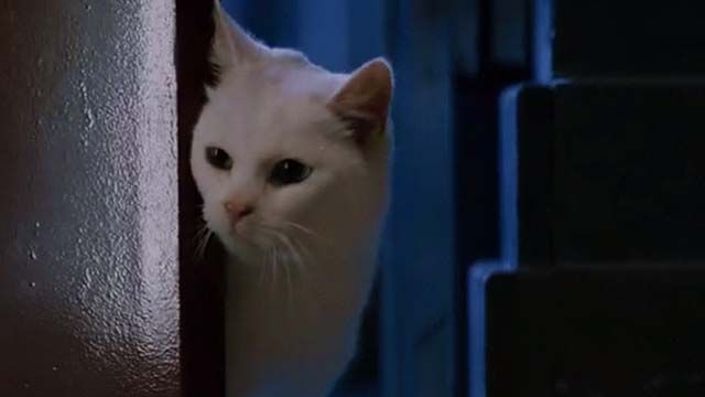 A white cat is among many cats seen in the movie Mindhunter (2004) but it also includes two graphically deceased cats (major Kitty Carnage Warning!)