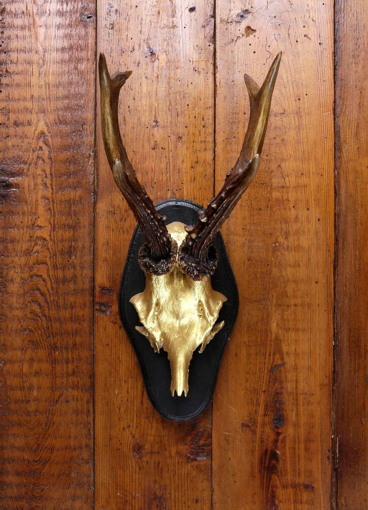 """Stylish wall sculpture, deer antler with scull, deer scull, deer mount, wall decoration, antler hook, antlers,  """"Gerd Goldfinger"""" von ZWDesign auf Etsy"""