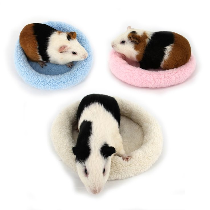 best 25  hedgehog pet cage ideas on pinterest